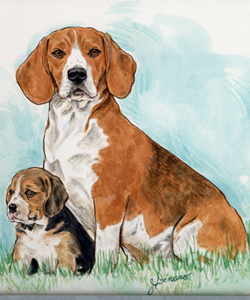 general Beagle Pup & Mom